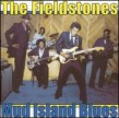 Fieldstones- Mud Island Blues