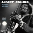 Collins Albert- Funky Blues LIVE 1973