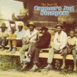 Cannon's Jug Stompers- The Best Of
