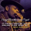 Chicago Blues Harmonica Project- More Rare Gems