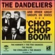 Dandeliers- Five Chances- Chop Chop Boom