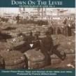 Down on the Levee: The Piano Blues of St. Louis Vol 2