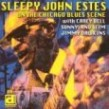 Estes Sleepy John- On The Chicago Blues Scene