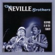 Neville Brothers-(2CDS) Keepin It In The Family