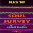 Black Top Soul Survey- Darrell Nulisch  Snooks Eaglin