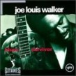 Walker Joe Louis- Blues Survivor