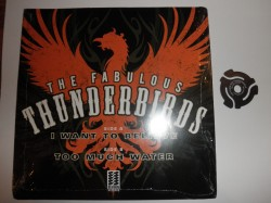 Fabulous Thunderbirds- Picture Sleeve 45RPM