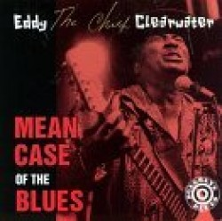 Clearwater Eddy- Mean Case Of The Blues
